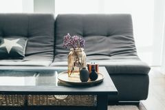 Living room decor Royalty Free Stock Photography