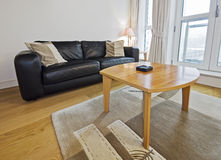 Living room detail. Modern living room detail with leather sofa and coffee table Royalty Free Stock Images