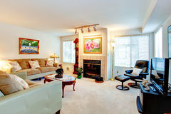 Living room with a fireplace. Stock Image
