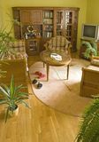 Living room with green plants. Yellow Living room with green plants and carpet Royalty Free Stock Photo