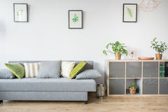 Living room with grey sofa. Decorative pillows and bookshelf royalty free stock images