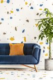 Living room interior with a navy blue sofa, green plant in a concrete planter and a white wall with a colorful lastrico pattern. R. Living room interior with a stock photography
