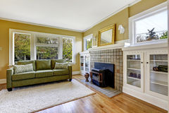 Living room iwith fireplace and green couch Stock Photos