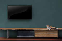 Living room led tvs on wall with kitten on wooden table media fu Stock Photography