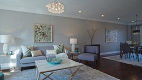 Living room interior. North America House.