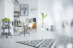 Living room with plants Royalty Free Stock Images