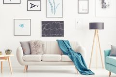 Living room with posters. Blue blanket on settee next to lamp in cozy living room interior with gallery of posters Royalty Free Stock Photography