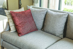 Living room with row of pillows on sofa at home Royalty Free Stock Image