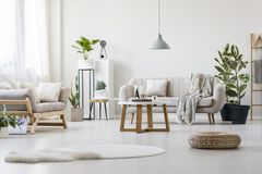 Living room with two couches. Stylish living room with two grey couches, fresh plants and wooden coffee table Royalty Free Stock Images