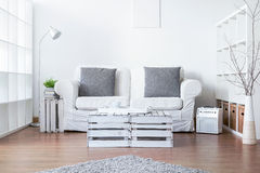 Living Room With Eco Soul Stock Photos