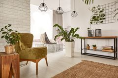Free Living Room With Wooden Furniture Stock Photography - 92505812