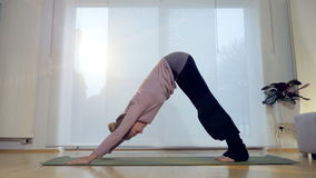 Living Room Yoga: Downward Facing Dog