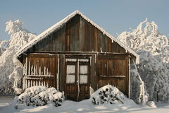 Living in the snow. Snow cover the village, frozen trees and bushes, small timber house in snow Royalty Free Stock Photos
