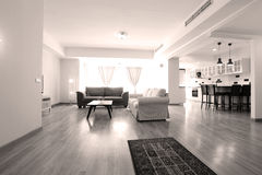 Livingroom with new furniture. Big living room with modern couches stock photo