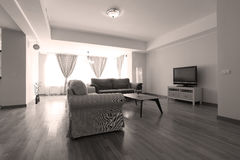Livingroom with new furniture. Big living room with modern couches stock images