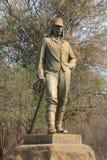 Livingstone staty Arkivbilder