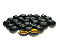 Livistonaspeciosa is rijpe vruchten is overvloedig in de wildernis stock foto's