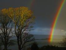 Livlig skotsk regnbåge Arkivfoto