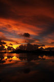 livlig solnedgång Royaltyfria Foton