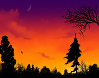 livlig solnedgång Vektor Illustrationer