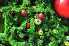 Livliga dekorativa bollar på julgranen Arkivfoto