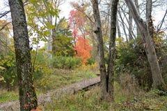 Livliga färger inramar slingan av den Rosecrans för inbördeskrigerafästningen delstatsparken i Murfreesboro, Tennessee royaltyfria foton