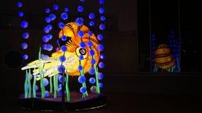 Livligt Sydney Light Installation Marine liv Arkivfoton