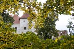 Livonia-Bestellungs-Schloss wurde mitten in dem 15. Jahrhundert errichtet Bauska Lettland im Herbst Lizenzfreie Stockbilder