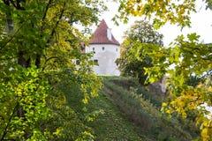 Livoniabeställningsslotten byggdes i mitt av det 15th århundradet Bauska Lettland i höst Fotografering för Bildbyråer