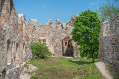 Livonian castle Royalty Free Stock Photo