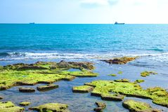Livorno e la vita con il mare Fotografie Stock Libere da Diritti