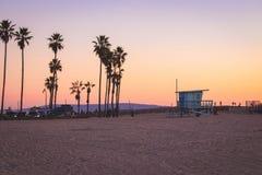 Livräddarestation och palmträd i Venice Beach, Kalifornien arkivbild
