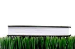 Livre À couverture dure vert sur l'herbe Photo stock