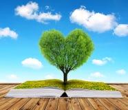 Livre avec un arbre sous forme de coeur Photos libres de droits