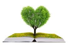 Livre avec un arbre sous forme de coeur Photos stock