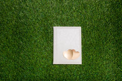 Livre blanc avec deux coeurs d'or se trouvant sur l'herbe verte Image libre de droits