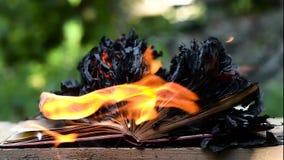 Livre brûlant sur des flammes d'incendie clips vidéos