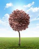 Livre britannique d'arbre d'argent Image stock