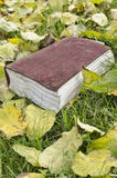 Livre d'automne Image libre de droits