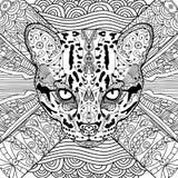 Livre de chat de coloration pour des adultes Images stock