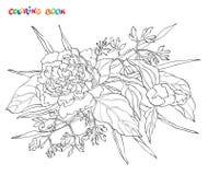 Livre de coloration Dirigez la fleur de pivoine d'isolement sur le fond blanc Élément pour la conception Photo stock