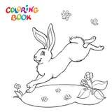 Livre de coloriage avec le lapin, la fleur et le papillon Photos libres de droits