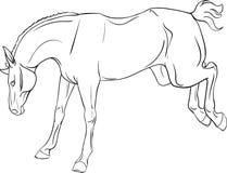 Livre de coloriage avec un cheval illustration stock