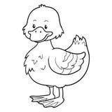 Livre de coloriage (canard) illustration de vecteur