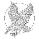 Livre de coloriage d'oiseau d'Eagle pour le vecteur d'adultes illustration libre de droits
