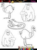 Livre de coloriage de bande dessinée d'animaux sauvages Image libre de droits