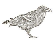 Tatouage de corbeau tribal photos 79 tatouage de corbeau tribal images photographies - Coloriage de corbeau ...
