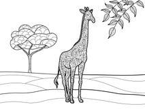 Livre de coloriage de girafe pour le vecteur d'adultes Photo libre de droits