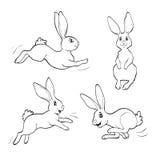 Livre de coloriage ou page Quatre lapins de chatte Images libres de droits