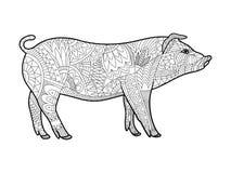 Livre de coloriage porcin pour le vecteur d'adultes illustration stock